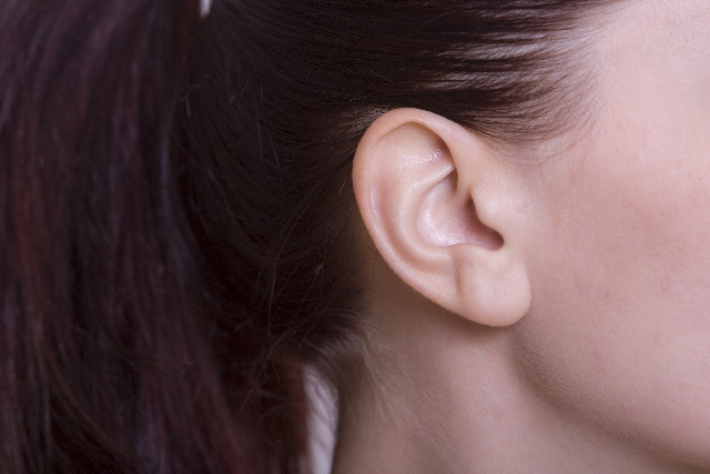 tubo of ear
