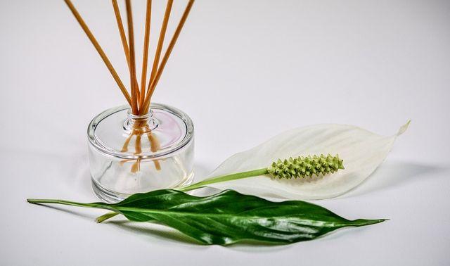 ホルモンレベルでストレス発散☆身近な◯◯で爽快になれる5つの方法