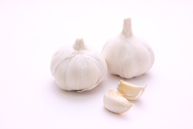 Garlic Power