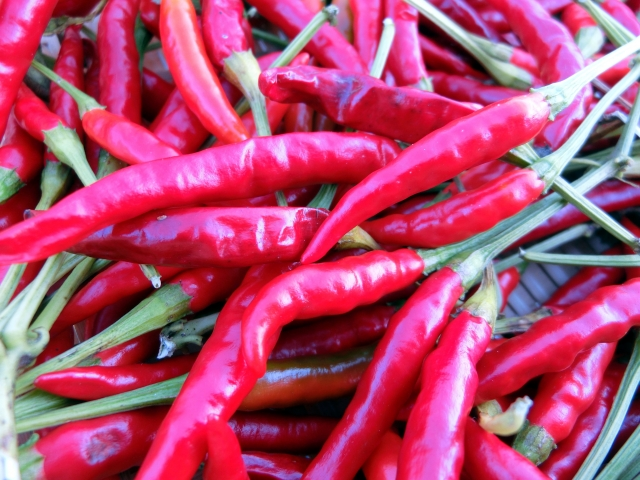 Capsaicin blood circulation promotion