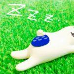 いびき改善計画☆体と脳を休めてグッスリ眠る5つのポイント